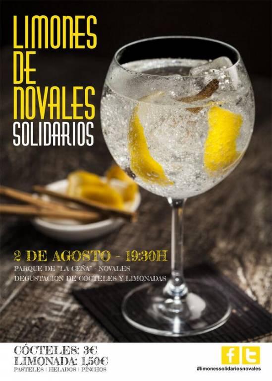 Cartel Limones Solidarios de Novales 2014