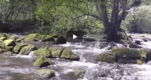 Video - Fuente del Francás de Hoznayo (Cantabria)