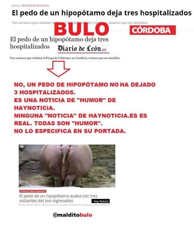 Bulo hipopótamo de Cabárceno (Cantabria)