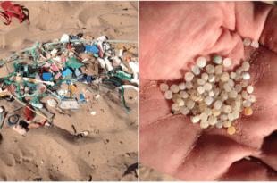 """Eduardo Noriega """"denuncia"""" la basura que hay en la playa de Langre (Cantabria)"""